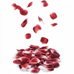 Pétalas de Rosa Perfumadas 100un